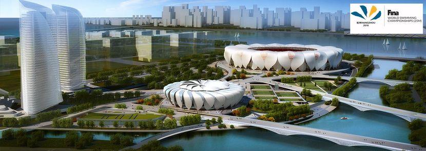 FINA celebrates 1 Year to Go to Hangzhou 2018!