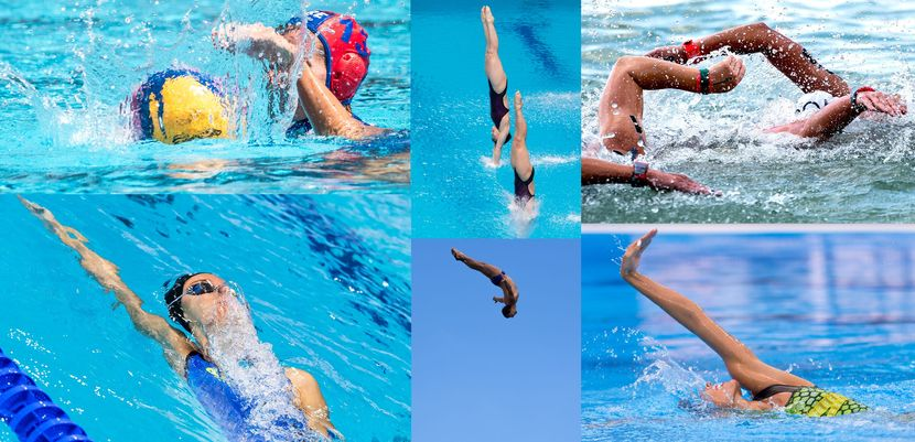 FINA forms new Athletes Committee of 16 members