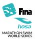 MSWS 2018 - series logo
